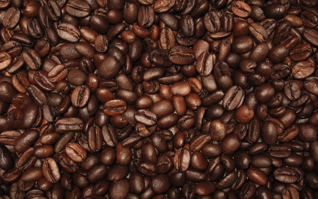 Det er de her bønner, der i ristet og kværnet format giver os kaffeelskere vores daglige skud sød mokka...